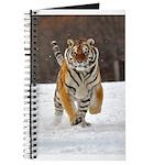 Siberian Tiger Journal