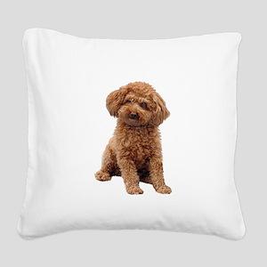 Poodle-(Apricot2) Square Canvas Pillow