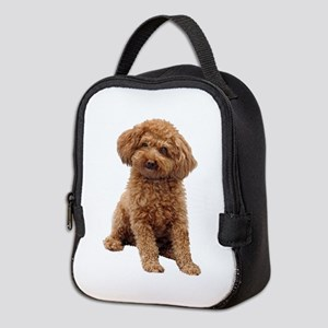 Poodle-(Apricot2) Neoprene Lunch Bag
