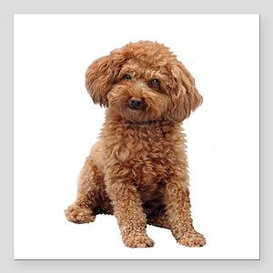 """Poodle-(Apricot2) Square Car Magnet 3"""" x 3"""""""