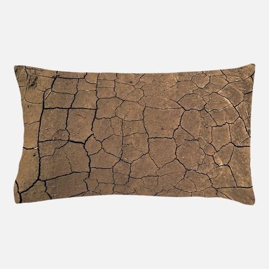 Art Pillow Case