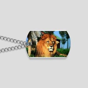 Lion Dog Tags