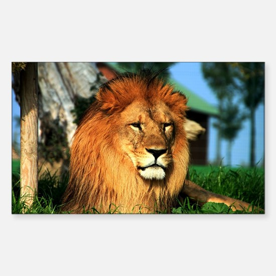 Lion Sticker (Rectangle)