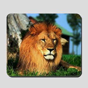 Lion Mousepad