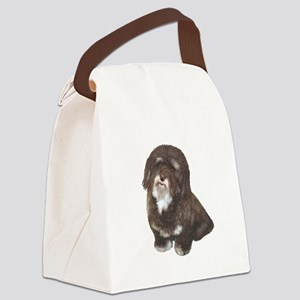 Havanese (brn-blk) Canvas Lunch Bag