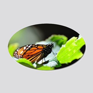 Monarch Butterfly 4 Wall Decal