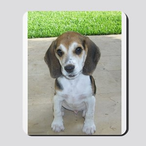 Adorable Beagle Puppy Mousepad