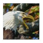 Screaming Eagle Tile Coaster