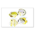 4ButterflyFish Sticker