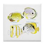 4ButterflyFish Tile Coaster