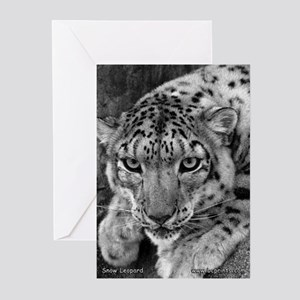 Snow Leopard 4 Greeting Cards (Pk of 10)