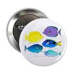 5 Unicornfish Surgeonfish 2.25