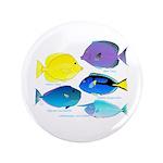 5 Unicornfish Surgeonfish 3.5