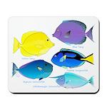 5 Unicornfish Surgeonfish Mousepad