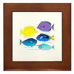 5 Unicornfish Surgeonfish Framed Tile