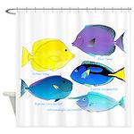 5 Unicornfish Surgeonfish Shower Curtain