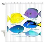 5 Unicornfish Surgeonfish Shower Curtain