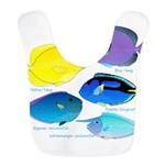 5 Unicornfish Surgeonfish c Bib