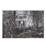 Doggy in the Window Postcards (Package of 8)