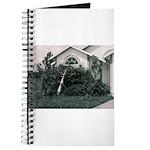 Palm Tree Window Journal