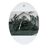 Palm Tree Window Oval Ornament