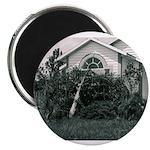 Palm Tree Window Magnet