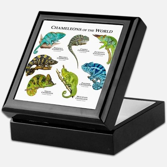 Chameleons of the World Keepsake Box