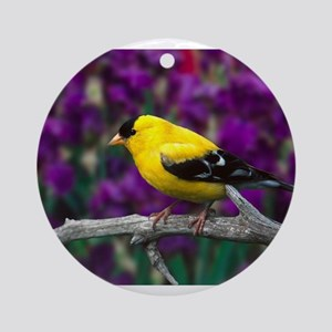 American Goldfinch Bird Black and Yellow Ornament