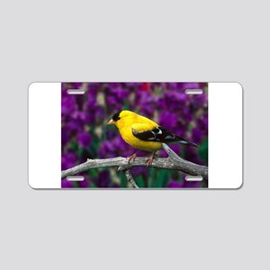 American Goldfinch Bird Black and Yellow Aluminum