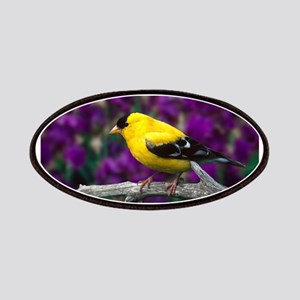 American Goldfinch Bird Black and Yellow Patches