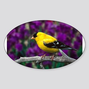 American Goldfinch Bird Black and Yellow Sticker
