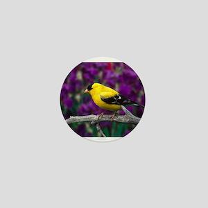 American Goldfinch Bird Black and Yellow Mini Butt