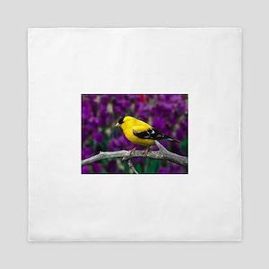 American Goldfinch Bird Black and Yellow Queen Duv