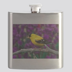 American Goldfinch Bird Black and Yellow Flask