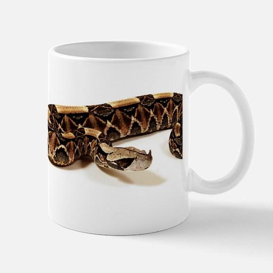 Bitis Gabonica Viper Mugs