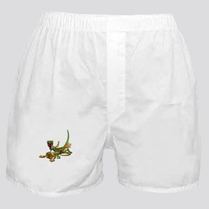 Gecko Sex Boxer Shorts
