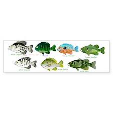 7 Sunfish Bumper Sticker
