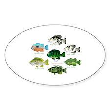7 Sunfish Sticker