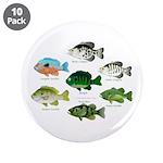 7 Sunfish 3.5