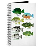 7 Sunfish Journal