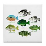 7 Sunfish Tile Coaster