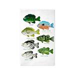 7 Sunfish 3'x5' Area Rug