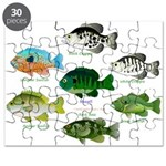 7 Sunfish Puzzle