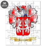 Finnegan Puzzle