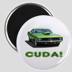 CUDA! Magnets