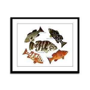 5 Grouper Framed Panel Print