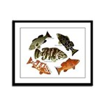 5 Grouper Framed Panel Print