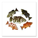 5 Grouper Square Car Magnet 3