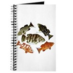 5 Grouper Journal