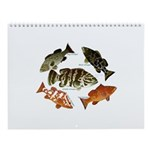 Reef Fish Of The Atlantic + Pacific Wall Calendar